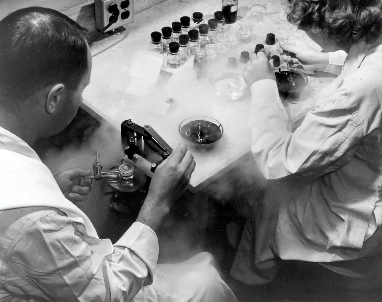 Két tudós petesejtet fagyaszt le egy laboratóriumban