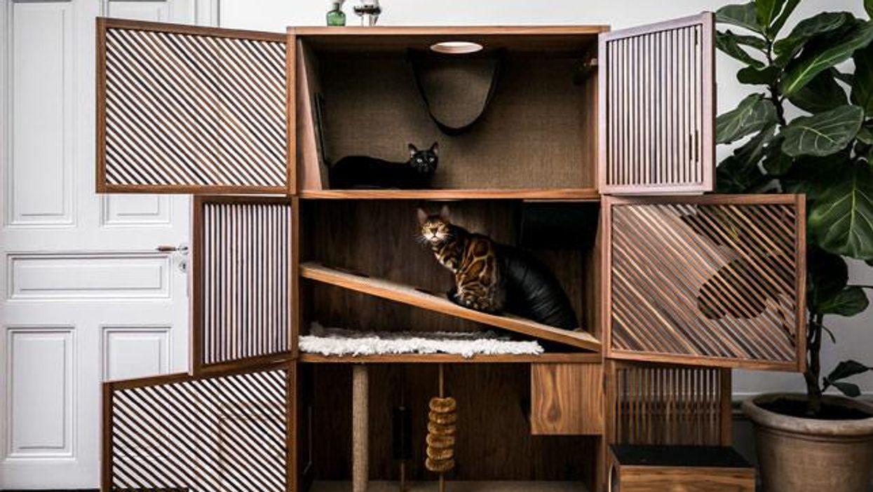 Még nem láttunk ennél dizájnosabb macskabútort!