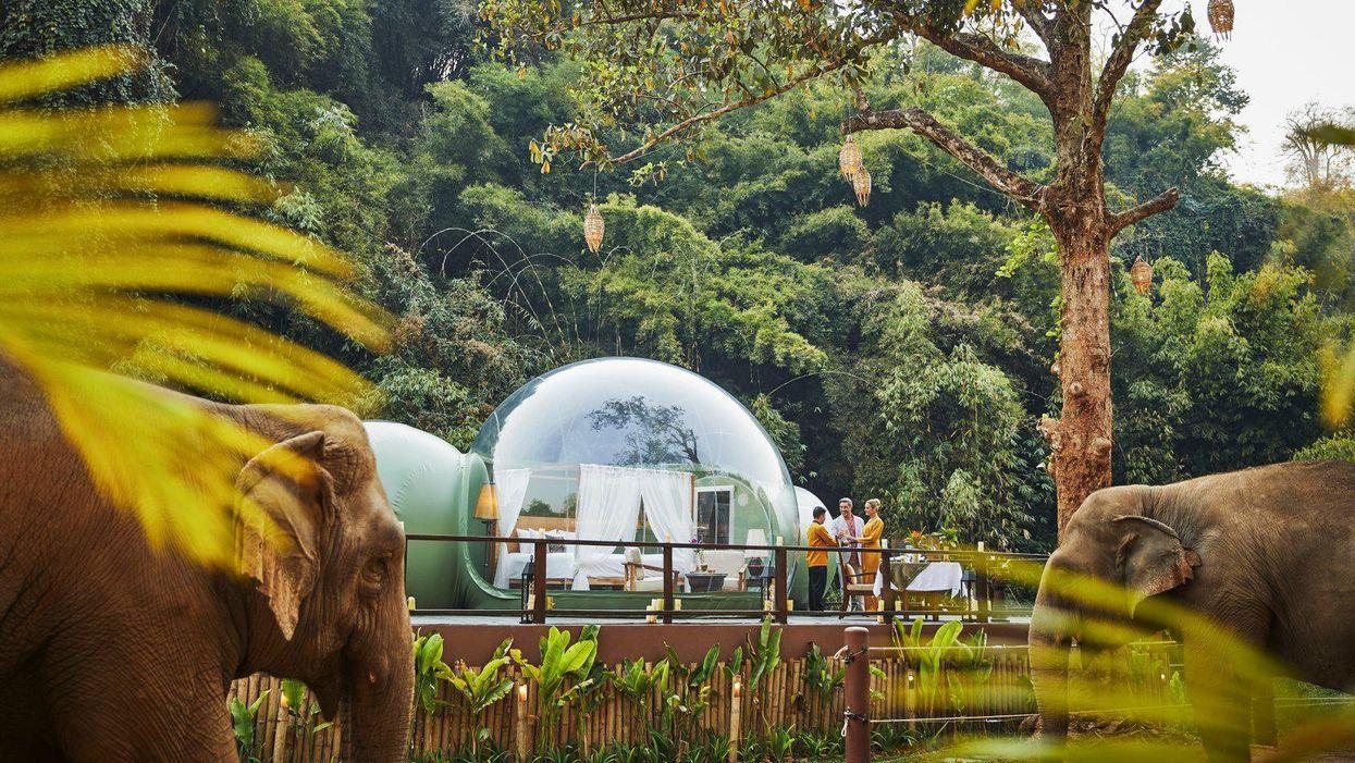 A glampinget és a vadlest ötvözi ez a thai szálloda
